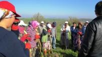 Biga'da İŞKUR  İşçileri İşe Başladı
