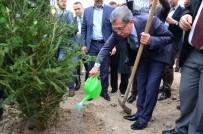 EMRULLAH İŞLER - Pursaklar'da Ağaçlandırma Seferberliği Sürüyor