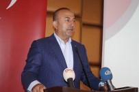 DÜŞÜNÜR - Bakan Çavuşoğlu Açıklaması 'Kıbrıs Sorunun Çözümü İçin Samimi Çaba Sarf Ediyoruz'