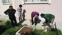 YAVRU KÖPEK - Beton Altındaki Yavru Köpekler Kurtarıldı
