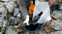 Bitlis'te Toprağa Gömülü Silah Ve Mühimmat Bulundu