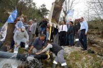PAŞALı - Feke'de 100 Yıllık Su Sorununa Çözüm