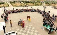 TUZLA BELEDİYESİ - Tuzla Belediyesi 2'Nci Sokak Oyunları Olimpiyatı Başladı