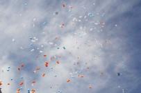 ALİ GÜVEN - 81 İlde 'Evet Balonları' Uçuruldu