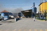 Bakan Eroğlu, Yangın Çıkan Yağ Fabrikasında İncelemelerde Bulundu