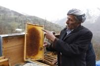 SONBAHAR - Arı Ölümleri Arıcıları Zor Durumda Bıraktı