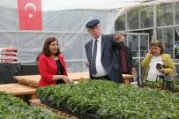 HASAN POLATKAN - Başkan Kurt, Park Ve Bahçeler Müdürlüğünü Gezdi
