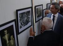 FOTOĞRAF SERGİSİ - Denizli'de 'Kaybolan Yaşamlar' Sergisi Açıldı