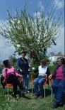 SOSYAL PAYLAŞIM - Muratpaşa Yaşlıevi'nde Masallar Heybeden Çıkıyor
