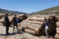 ORMAN İŞLETME MÜDÜRÜ - Yığılca'da Orman Ürünleri Depoları Denetlendi