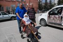 79 Yaşındaki Nine Oy Kullanmaya Tekerlekli Sandalye İle Gitti