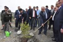 OSMAN NURI CIVELEK - Azdavay'da Maden Sahaları Ağaçlandırılıyor