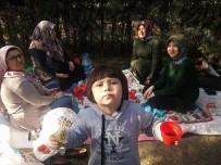 Bolvadin'de Oy Kullananlar Soluğu Piknik Alanlarında Aldı