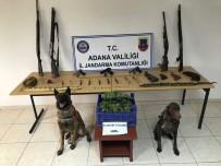 KURUSIKI TABANCA - Adana'da Uyuşturucu Ve Silah Operasyonu