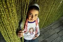 ESENGÜL - 'Keşfedilmemiş Amasya'nın Sonuçları Açıklandı
