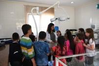 KONYAALTI BELEDİYESİ - Konyaaltı Belediyesi Hayvan Barınağı 3 Ayda 450 Öğrenci Ağırladı