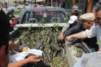 Orman İşletme Müdürlüğü Gül Fidanı Dağıttı