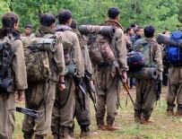 PROPAGANDA - PKK'ya büyük şok! Sözde 50 üst düzey sorumlu...