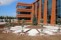 CUMHURIYET ÜNIVERSITESI - Cumhuriyet Üniversitesi'nde Yeni Yerleşke Çalışmaları