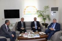 ORTADOĞU - Müsteşar Yardımcısı Tunç, Tarım Fuarını Değerlendirdi