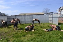 KıRKPıNAR - Pehlivanlar Yağlı Antrenmanlara Başladı