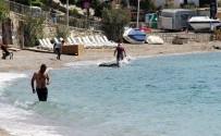 YERLİ TURİST - Bodrum'da yaz sezonu açıldı