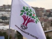 GRUP BAŞKANVEKİLİ - HDP'li vekile tahliye kararı