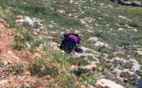 Şanlıurfa'da Trafik Kazası Açıklaması 1 Ölü, 2 Yaralı