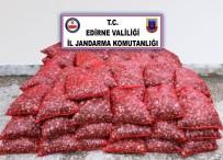 KAÇAK - Edirne'de 2 Ton Canlı Midye Ele Geçirildi