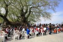 Gölyazı'da Renkli Turizm Haftası Kutlaması