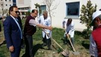 HASTANE BAHÇESİ - Iğdır Devlet Hastanesi Bahçesi Yeşilleniyor