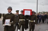 İRFAN BALKANLıOĞLU - Ordu Şehidini Karşıladı