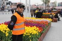 ÇEKIM - Taksim Meydanı'ndaki Laleler Koruma Altında