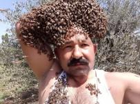 YENIYURT - Arıları Baş Tacı Yapan Adam
