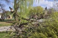 KAVAKYOLU - Erzincan'da Şiddetli Rüzgar Vatandaşları Evlerine Kapattı