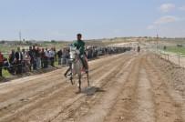Rahvan At Yarışları İlk Kez Nizip'te Düzenlendi