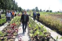 SEYHAN NEHRİ - Adana'ya Macera Temalı Botanik Park