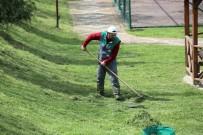 TOPLU KONUT - Başiskele'de Yeşil Alan Çalışmaları Sürüyor