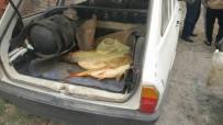 Beyşehir'de Elektro Şok İle Avlanan Balıklar Ele Geçirildi