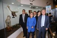 Gaziantep Hayvanat Bahçesi'ne Bir Günde 90 Bin Ziyaretçi