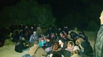 KAMERUN - İzmir'den Yurt Dışına Kaçmaya Çalışan 113 Göçmen Yakalandı