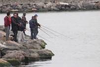 BALIK TUTMAK - Olta Balıkçıları Av Yasağına Uyulmamasından Şikayetçi