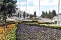 MELİH GÖKÇEK - Büyükşehir Belediyesi, Ankara'yı 10 Milyon Çiçekle Donatıyor