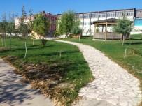 DEKORASYON - Dursunbey Meslek Yüksek Okuluna İki Yeni Bölüm