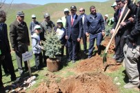 MEHMET AKBAŞ - Muş'ta '15 Temmuz Hatıra Ormanı' Oluşturuldu