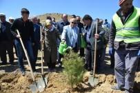 NECATI ŞENTÜRK - Şehit Polis Gökhan Ünaldı İçin Hatıra Ormanı Oluşturuldu