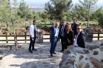 Sequa Temsilcisi Aynur Kuytu Recep Tayyip Erdoğan Mesire Alanında İncelemelerde Bulundu