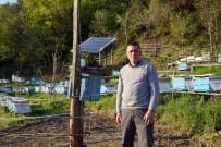 MUSTAFA TAŞ - Arı Kovanlarını Ayılardan Korumak İçin Nöbet Tutuyorlar