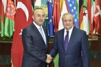 EKONOMİ BAKANI - Bakan Çavuşoğlu Özbek Mevkidaşıyla Görüştü