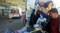 Eşek Tarafından Isırılan 3 Çocuk Hastaneye Kaldırıldı